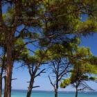chalkidiki-beach-sithonia-29