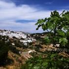 naxos-apeiranthos-village-05