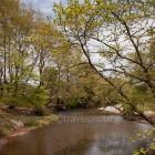 potamos-kireas-khreas-river-07