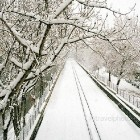 xioni-snow-in-athens-02