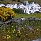 Tinos island Steni village